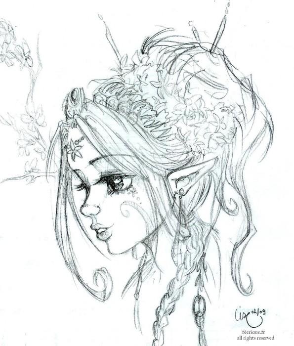 L elfe magnolia - Dessins de fees ...