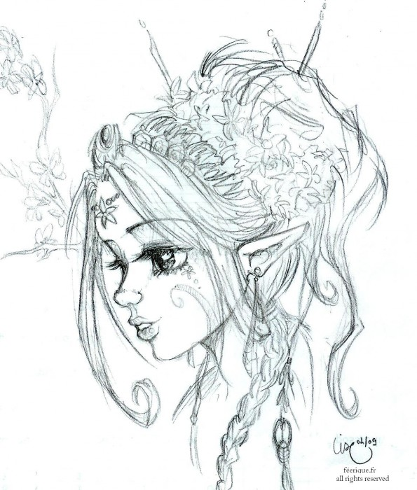 L elfe magnolia - Dessin feerique ...