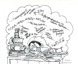 fée féerique dessin BD comics humour travail lycée