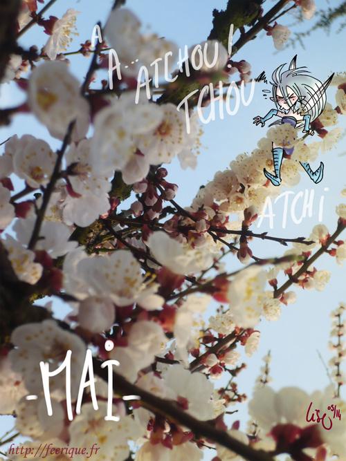 fée du mois de mai fleurs de cerisier