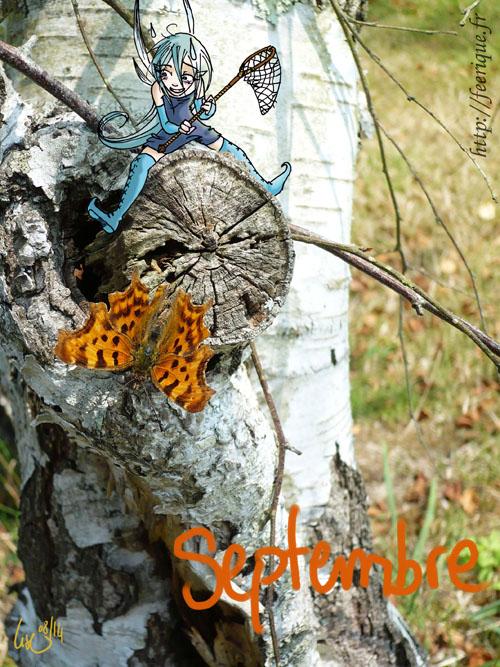 calendrier des fées en dessins féeriques papillons d'automne