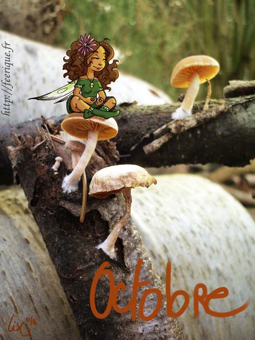 mois d'octobre féerique été indien des petites fées et des champignons de forêt